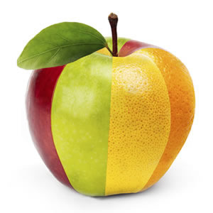 An apple made up of different fruit slices